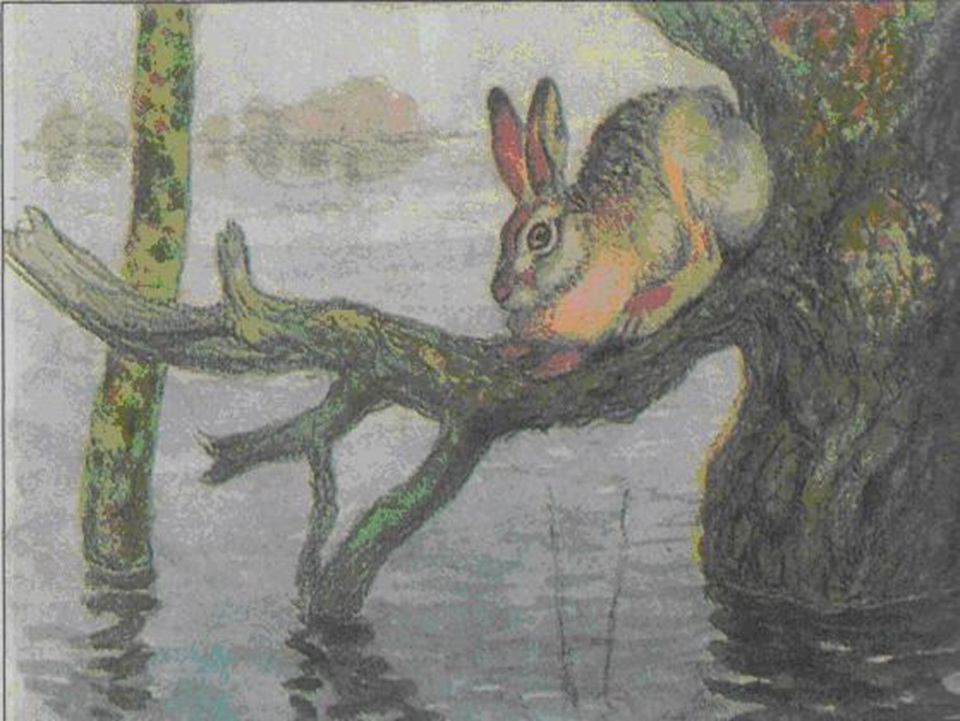 Сочинение по картине Комарова «Наводнение»