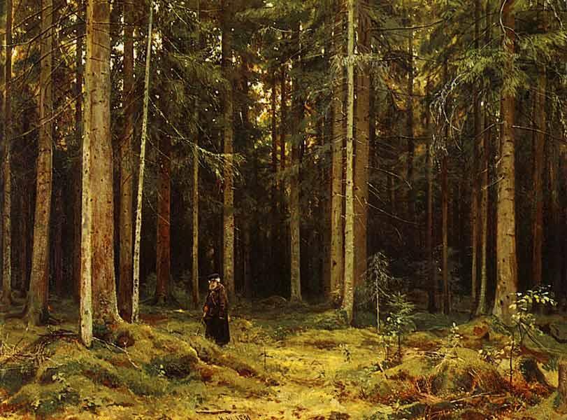 Сочинение по картине И. И. Шишкина «В лесу графини Мордвиновой»